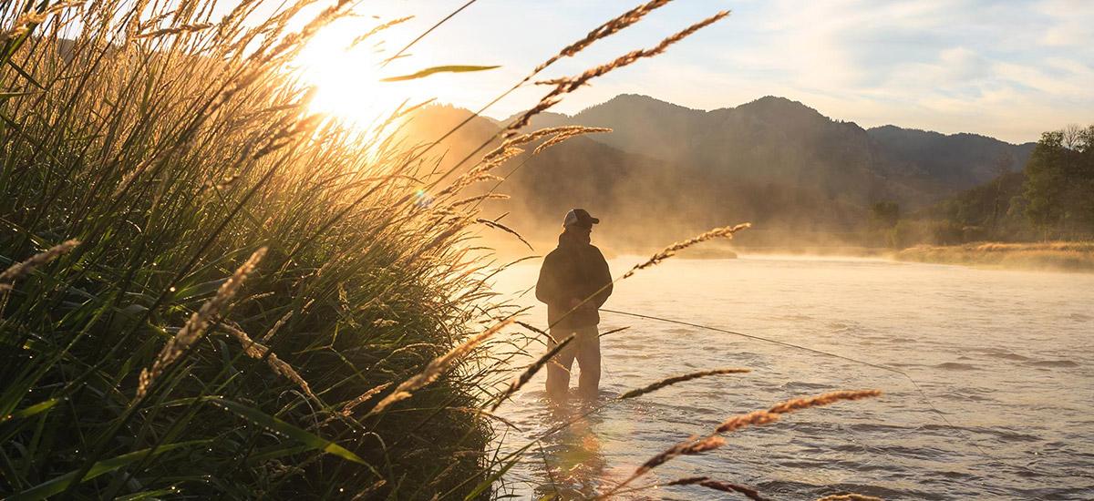 Märkischer Anglerhof Bestensee Zander